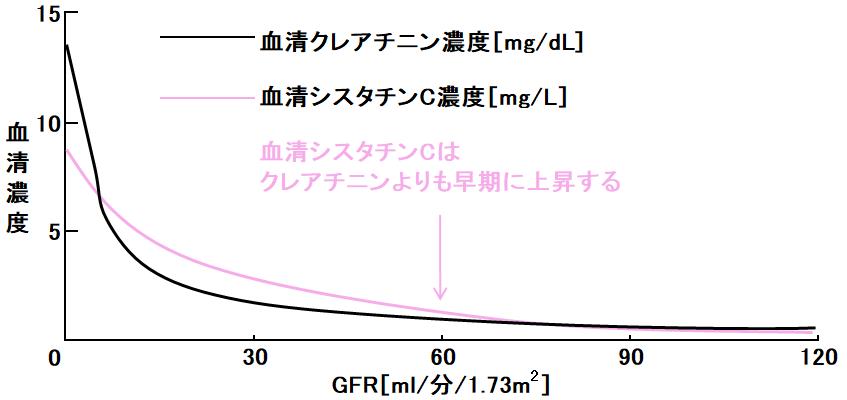 クリアランス 計算 式 クレアチニン 腎機能の程度を判断する指標(SCr、CCrからeGFRへ)